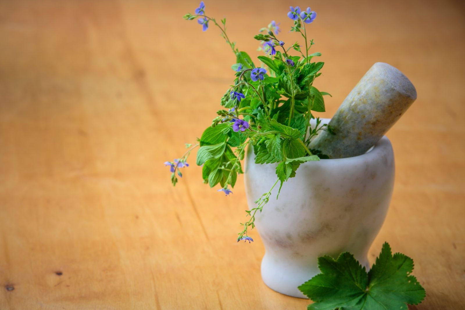 Herbs with flower in a container